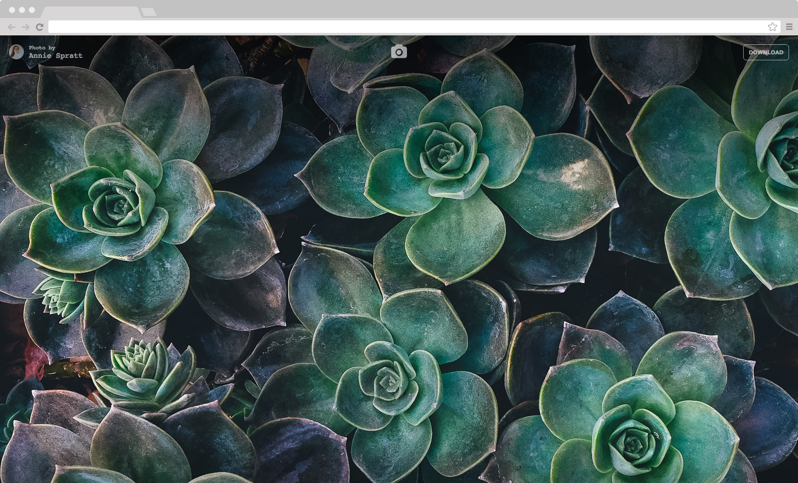 Unsplash Instant on Chrome